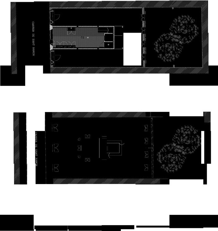 04_plantes